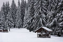 Snow covered wooden table and benches in forest. Vacant snow covered wooden table and benches in winter snow in a park. Recreation picnic area Royalty Free Stock Photo