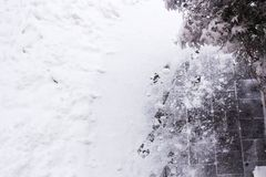Snow-covered yard and footprints in snow, top view. Snow-covered yard and footprints in snow, arborvitae branch under snow in side, top view Royalty Free Stock Photo