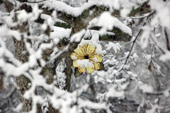 Snow covered yellow flower birdhouse Stock Photography