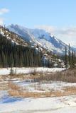 Snow covers alberta, canada. Jasper national park, alberta, canada, sample of the wild west Royalty Free Stock Photos