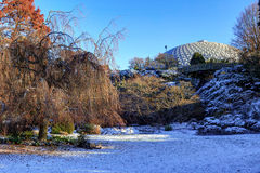Snow covers Large Quarry Garden in Queen Elizabeth Park Royalty Free Stock Photos