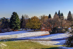 Snow covers Queen Elizabeth Park Stock Image