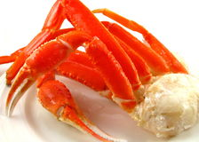 Snow Crab Cluster Stock Image