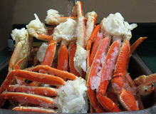 Snow crab clusters defrosting. Defrosting snow crab clusters in a sink Royalty Free Stock Image