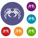 Snow crab icons set. In flat circle red, blue and green color for web Stock Images