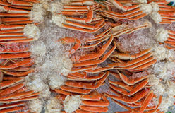 Snow Crabs Stacked on Ice--Fish Market, Washington, D.C. Royalty Free Stock Image