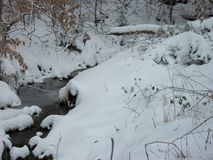 Snow on the Creek. Miss this view. Simple backyard photo taken of our snowy creek in Virginia Royalty Free Stock Image