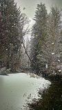 Snow by a Creek. The creek on a snowy day Royalty Free Stock Photography