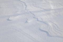 Snow crust Stock Images
