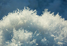 Snow crystal background Royalty Free Stock Images
