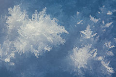 Snow crystal background Royalty Free Stock Image