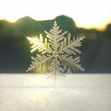 Snow Crystal / Snowflake Stock Images