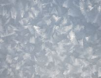 Snow crystals Stock Image