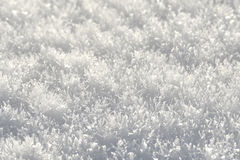 Snow crystals Stock Photography