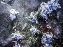 Snow crystals on the ice. The cold and the hot brings crystals that are delicate and pleasant to look at Stock Image