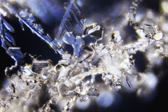 Snow Crystals Royalty Free Stock Photos