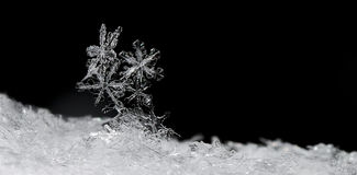 Snow crystals panorama on black Royalty Free Stock Photos