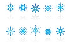 Snow crystals with reflection. Different snow crystals with reflection over white background Stock Photography