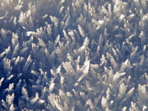 Snow crystals in the sun. A close up short if snow crystals on a cold winters Royalty Free Stock Photography