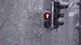 Snow Cyclone on the Streets stock video footage