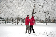 Snow dance Stock Image