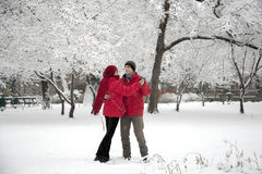 Snow dance Stock Photography