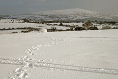 Snow on Dartmoor Stock Photos