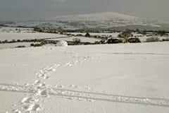Snow on Dartmoor Stock Photos