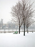 Snow day. Bench in snow Stock Photo