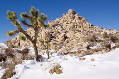 Snow in desert Stock Photos