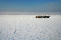 Snow desert Royalty Free Stock Photography