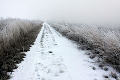 Snow on a Country Road Royalty Free Stock Photos