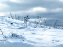 Snow Drifts Royalty Free Stock Image