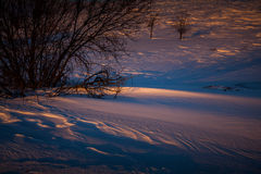 Snow drifts illuminated by the sun Stock Images