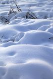 Snow drifts in snowbound winter meadow. After snowfall Royalty Free Stock Photography