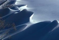Snow Dune. A wind blown snowy field Stock Image