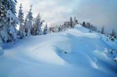 Snow dunes Stock Images