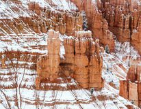 Snow Dusted Hoodoos Stock Photo