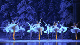 Snow elves-The first act of fourth field snow Country  -The Ballet  Nutcracker. Ukraine Kiev theatre ballet dancers perform the Nutcracker in Nanchang in Stock Photos