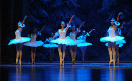 Snow elves-The first act of fourth field snow Country  -The Ballet  Nutcracker Royalty Free Stock Photos