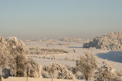 Snow everywhere. Snow cover the village, frozen trees and bushes Royalty Free Stock Images