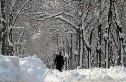 Snow - extrem vinter i Rumänien royaltyfria foton