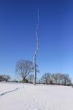 snow för blå sky Arkivfoto