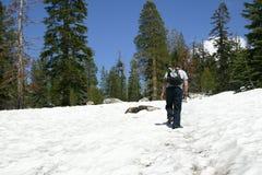 snow för kupolfotvandrarevaktpost Arkivbilder