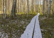 snow för målarfärg för höstkanfasolja arkivfoton