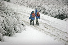 Snow fall Royalty Free Stock Photos