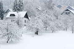 Snow fall Stock Photography