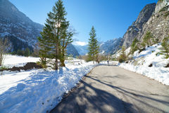 Snow fall early winter and late autumn. Winter road in the forest. Stock Photos