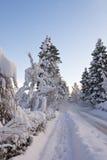 Snow fall Stock Photo
