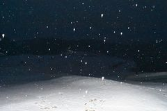 Snow fall royalty free stock photo
